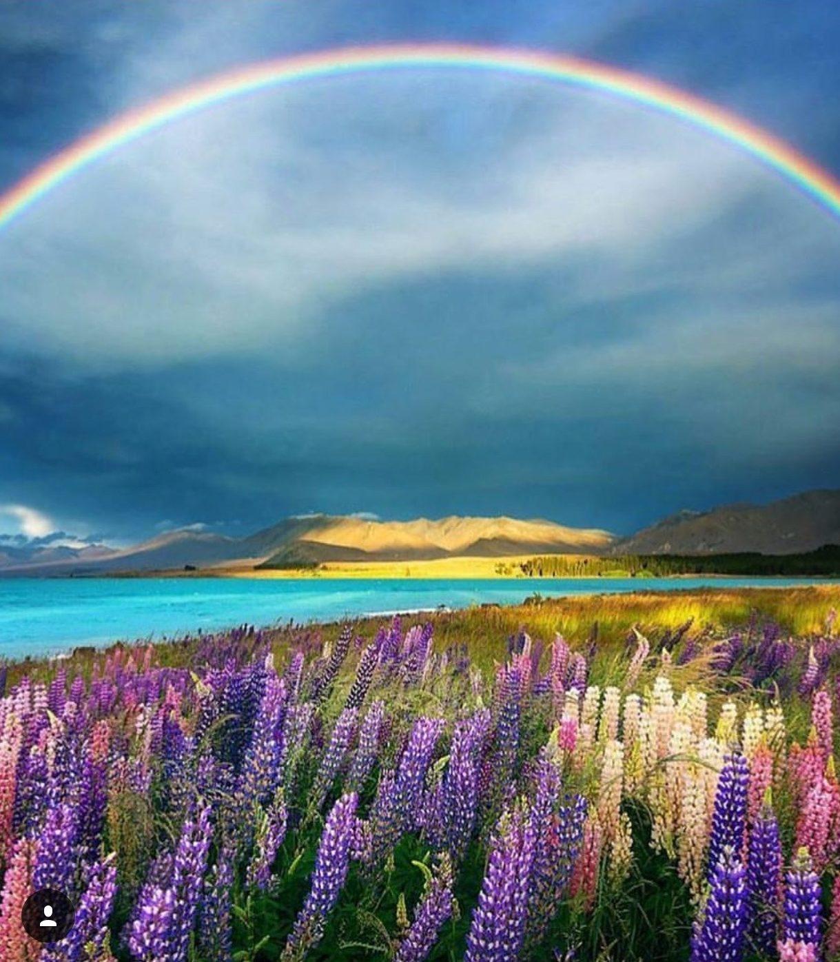 Emergenze Spirituali