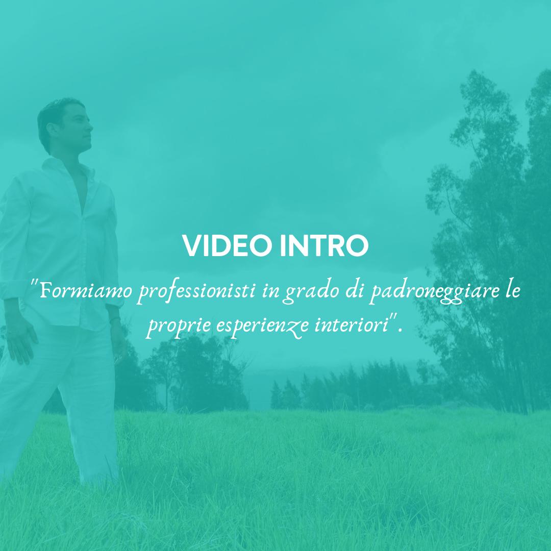 Guarda i brevi video introduttivi